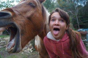 Un... quoi ? J'ai un Petit cheval ? ... dsc01004-300x199